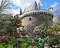 Le Château des ducs au printemps.JPG
