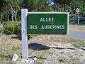 Le Touquet-Paris-Plage (Allée des Aubépines).JPG
