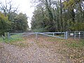 Legbourne Wood - geograph.org.uk - 606922.jpg