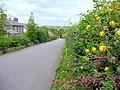 Linton Road, Bromsash - geograph.org.uk - 1408547.jpg
