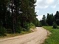 Lithuania, Nature (7630925350).jpg
