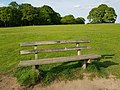 Long shot of the bench (OpenBenches 6079-1).jpg