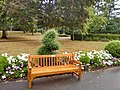 Long shot of the bench (OpenBenches 8019-1).jpg