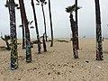 Los Angeles County (27451604501).jpg