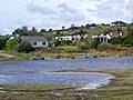 Lough Corrib-An Choirib near Burrusheen-Barr Roisin - geograph.org.uk - 1262764.jpg