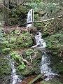 Lower Gleason Creek Falls - panoramio.jpg