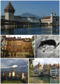 Lucerne collage.png