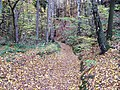 Mšeno, cesta z Romanova do Kačiny.jpg
