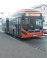 MKS Krosno - autobus 241.png