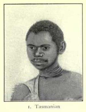 Negroid - Tasmanian man, Tasmanian type