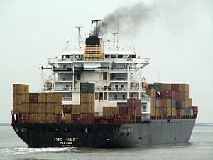 MSC Hailey p3, at Port of Antwerp, Belgium 23-Dec-2005.jpg