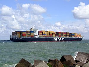 MSC Pamela p17 approaching Port of Rotterdam, Holland 29-Jul-2007.jpg