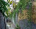 Madeira Funchal Gassen.JPG