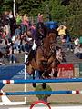 Maimarkt Mannheim 2014 - 51. Maimarkt-Turnier-252.JPG