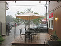 Maple PJs Rain 27Sept2015 1.jpg