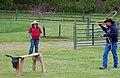 Mark E. Hufeisen Horse Complex (17296021526).jpg