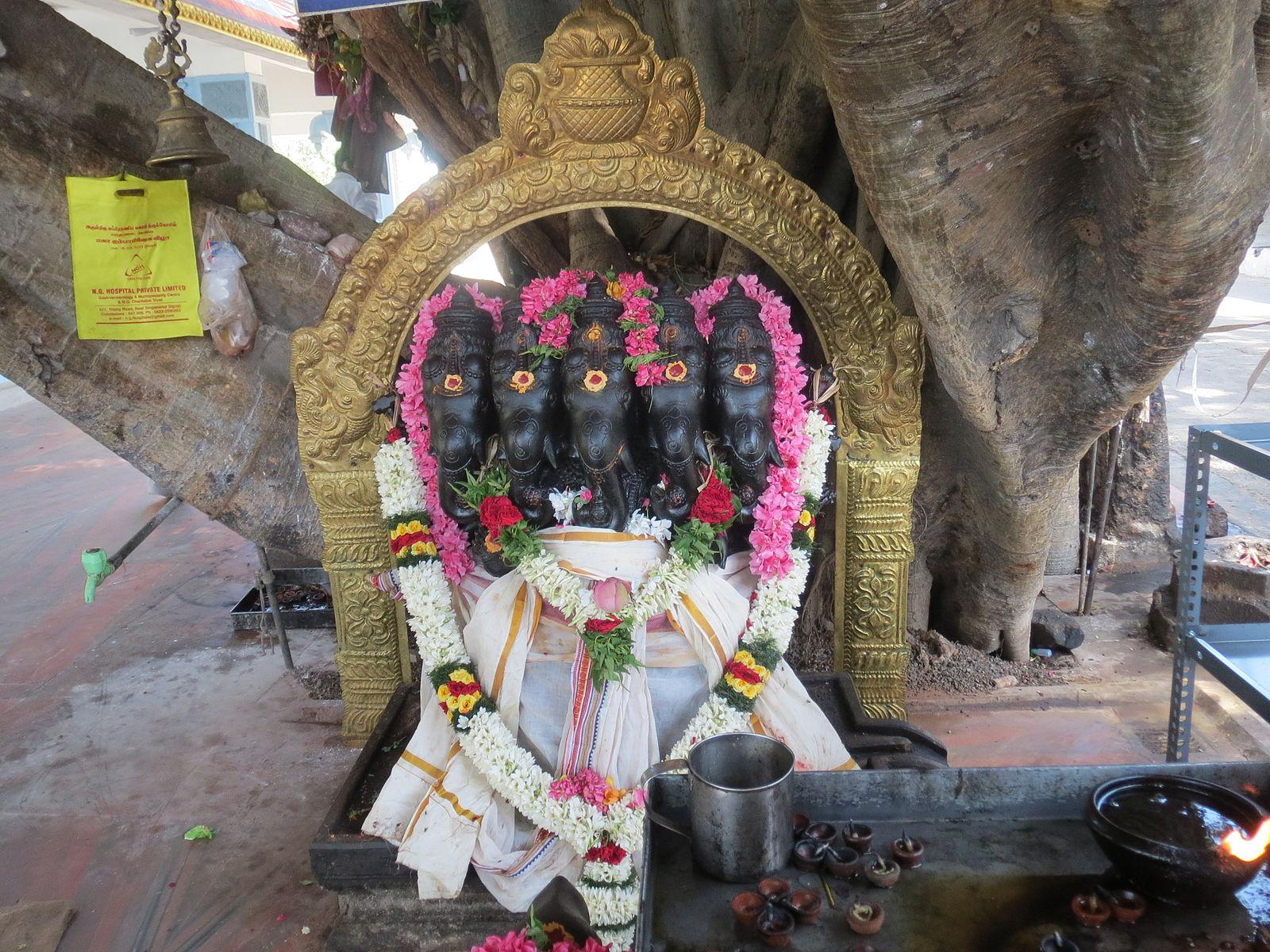 படிமம்:Maruthamalai Pancha virutcha Vinayagar.jpg