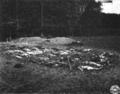 Mass grave Germany 1945, Hirzenhain 2.png