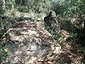 Megalits montargull.jpg
