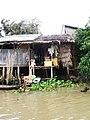 Mekong Delta, Vietnam - panoramio (11).jpg