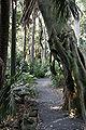 Melb botanical gardens04.jpg