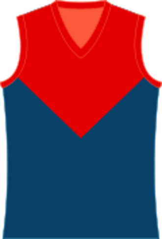 Colac & District Football League - Image: Melbourne Demons Jumper