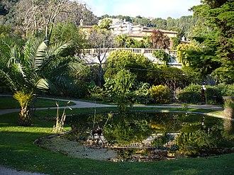 Jardin botanique exotique de Menton - Garden