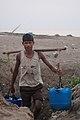 Methi Water Boy.jpg