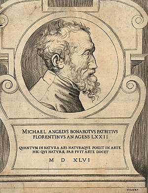 Giulio Bonasone - Giulio Bonasone, Portrait of Michelangelo Buonarroti at 72, 1546