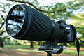 Micro-Nikkor 200mm f-4D - New Gear Acquired! (8688218719).jpg