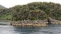 Milford Sound, South Island (483079) (9485257820).jpg