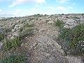 Mistra, St Paul's Bay, Malta - panoramio (14).jpg
