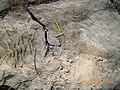 Monte Carangola em Tete - panoramio - Nelson Deolinda Amin… (5).jpg