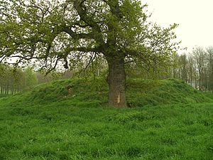 Audrieu - Remains of the Motte-and-bailey castle