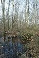 Motte op de Butsberg te Tielt-Winge - 372238 - onroerenderfgoed.jpg