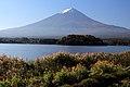Mount Fuji from Oishi Park.jpg
