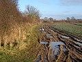 Muddy footpath, looking towards New Road - geograph.org.uk - 1070965.jpg