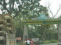 Mudumalai Tiger reserve, Tamil Nadu, India.JPG