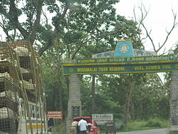 Entrance to Mudumalai tiger reserve