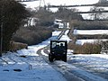 Mule on Morborne Hill - geograph.org.uk - 1162912.jpg