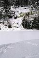Muskoka Woods, Rosseau, Ontario in Winter - panoramio - A J Butler (6).jpg