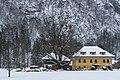 NDOÖ 648 Sommerlinde in der Lahn Grünau Almtal Dez 2014-0295.jpg