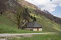 NP Kalkalpen Rosenau aHP Blumauer Alm.jpg