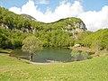 Nacionalni park,,Sutjeska,,.jpg