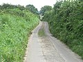 Narrow Lane - geograph.org.uk - 532578.jpg