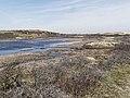 Nationaal Park Kennemerland (26498260677).jpg