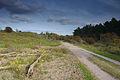 Nationaal Park Zuid-Kennemerland (04).jpg