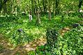 Nationalpark Müritz - alter Friedhof Krienke (1).jpg