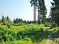 Naturpark Rothaargebirge - panoramio (6).jpg