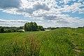 Naturschutzgebiet Uedesheimer Rheinbogen.jpg